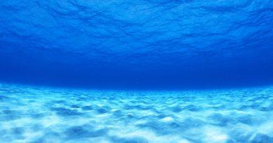 Algunos Misterios De Las Profundidades Del Mar