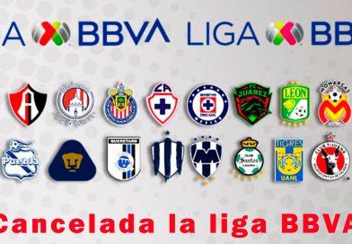 Liga MX cancela el Torneo Clausura 2020 de manera definitiva.